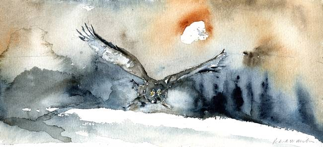 Grey Owl Flight II