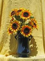 Sunflowers and Linen
