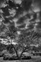 April Sky at Inn at Cedar Falls by Jim Crotty