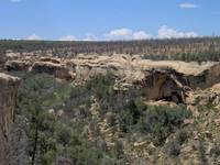 Canyon of the Anasazi