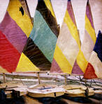 Five Sailfish Boats