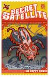 The Secret Satellite Mail Order Flyer #11 Posters