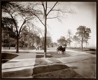 Chicago, Lake Shore Drive c1905