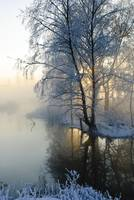 The misty river in winter