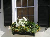 pretty-window-box
