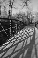 Shadowy Bridge