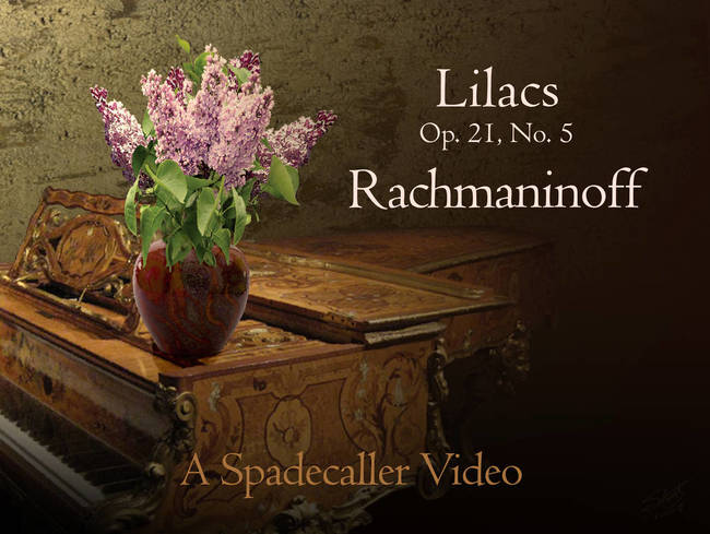 Lilacs By Rachmaninoff