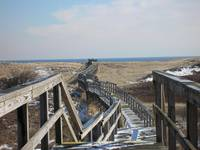 Boardwalk on Plum Island