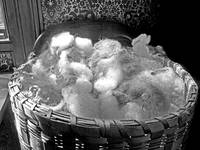 Raw Wool in an Antique Basket BW (2)