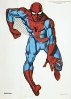 Pop Art #7 Spider-Man