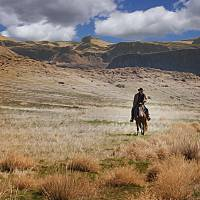 Cowboy On The Ancient Lakes Trail Art Prints & Posters by Mark Whitesell