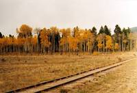 High Country Railroad Autumn (Colorado)
