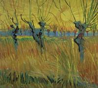Pollarded Willows and Setting Sun by Van Gogh