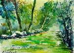 watercolor 019031
