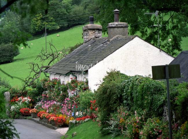 Nap101 English Country Garden By Nevilleprosser