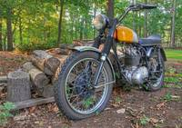 BSA in the Backyard