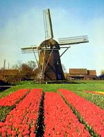 Holland' s Mill