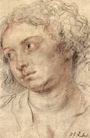 Head of a Woman by Peter Paul Rubens