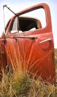 Grass and Ford Door