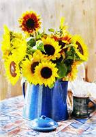 My Birthday Sunflowers
