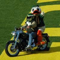 Oregon Duck on Harley by John Tribolet