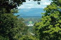 Autzen Stadium View Painting