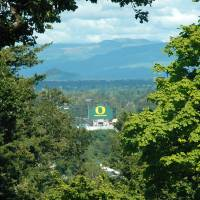 Autzen Stadium View Painting by John Tribolet