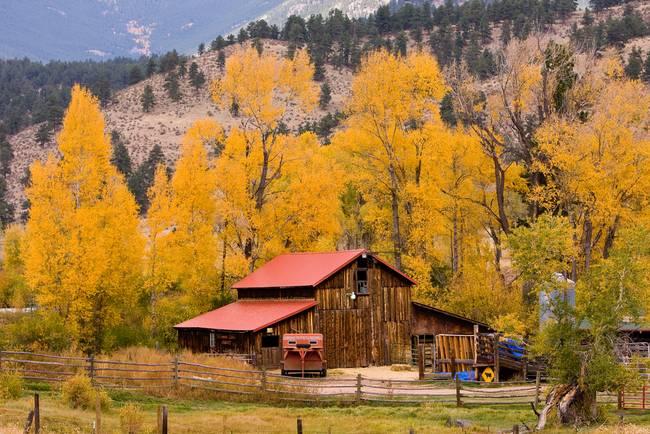Colorado Rocky Mountains Autumn Barn