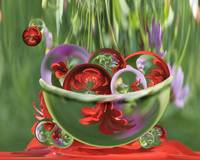 Red Flower Garden - Bowl of Circles
