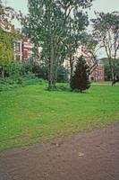 8Vondel Park by Priscilla Turner
