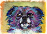 The Optimist - fun chihuahua painting art portrait