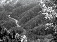 Great Smokey Mountain National Park road