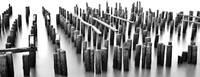 Frozen Dock by Marcus Panek
