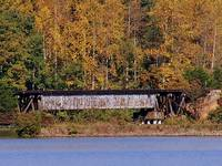 Autumn Train Trestle