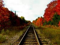 Train Tracks in Sault Ste. Marie, ON