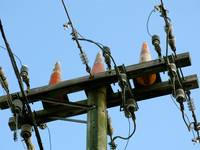 Safety Cones on Telephone Pole