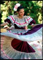 Traditional Mexican Dancer by Gerald Huth