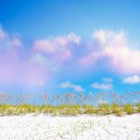 Perfect Day Beach Dunes Art Prints & Posters by Cynthia Duerr