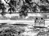 Natchitoches Cane River Downtown Black White 01