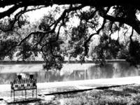 Natchitoches Cane River Rue Beau Port BW bench 02
