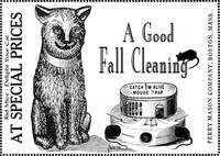 A Good Fall Cleaning