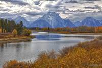 Autumn View of Mt. Moran