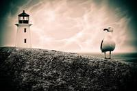 Seagull and lighthouse moody blue.jpg