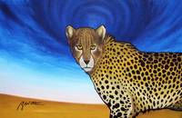 Cheetah with Blue Sky