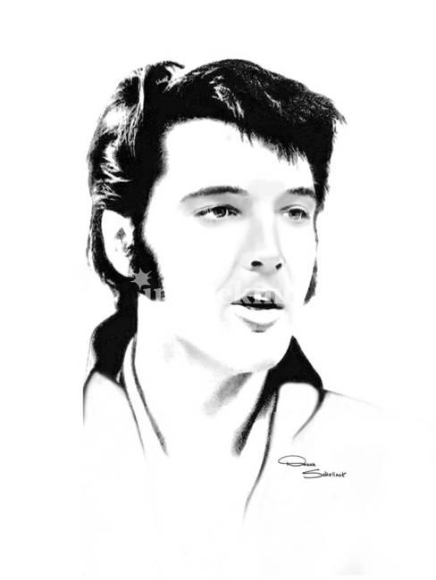 Elvis by d schellack