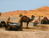 Camels resting at the oasis