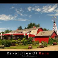 Barn Revolution Art Prints & Posters by Thushan Sanjeewa