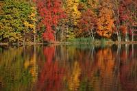 Autumn Colors Reflected