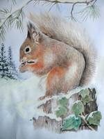 Christmas Red Squirrel