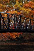 The Bridge: Rocky River Metroparks